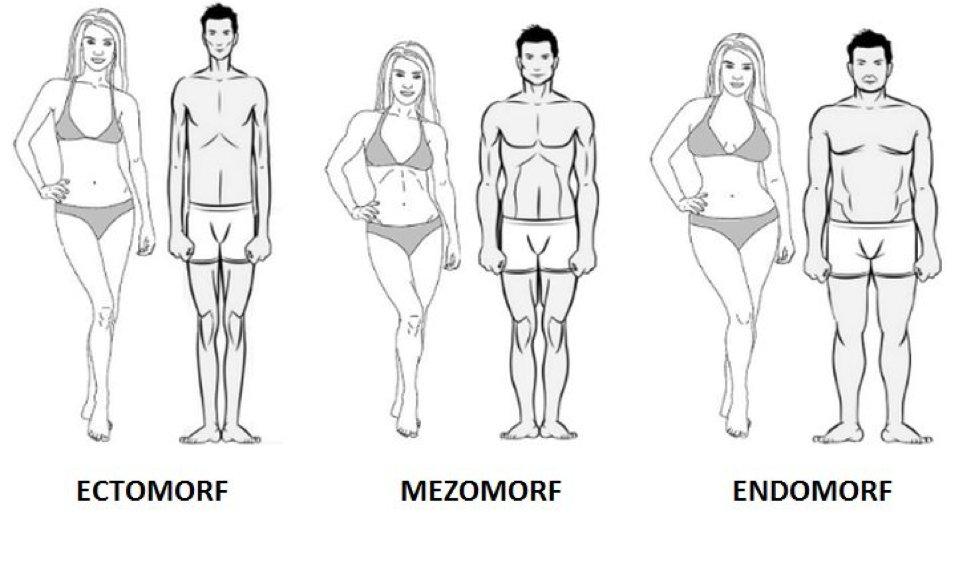 macrocomenzi pentru pierderea de grăsime masculină endomorf fidget pentru a pierde în greutate