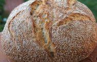 Fara paine nu se poate